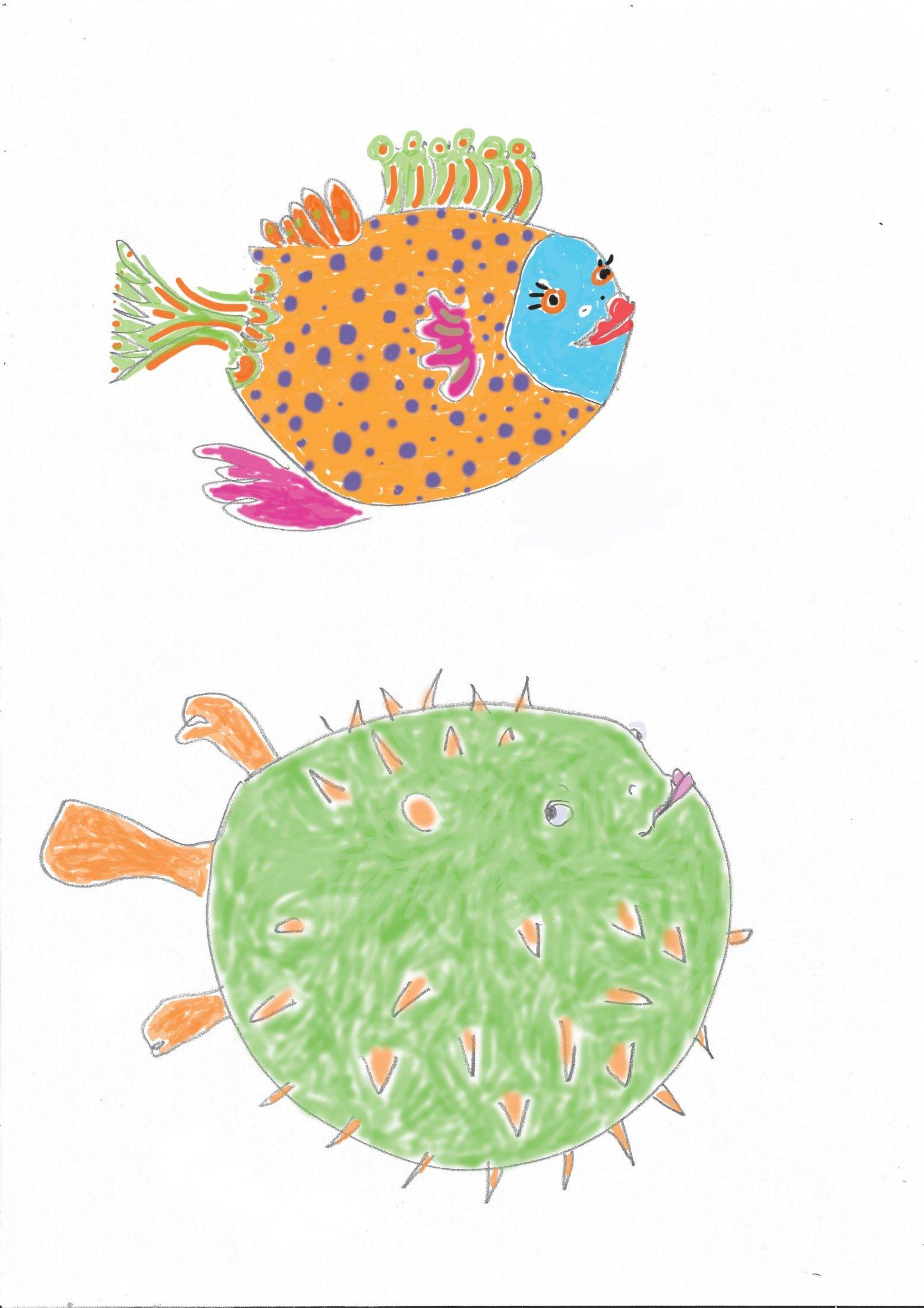fish-monju-2-col